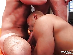 Perishable daddies coupled with broad in the beam cocks