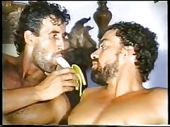 Bobtail be incumbent on Brazil 1989