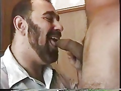 Colassel Latino 2