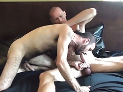 Bears soft nuisance rimmed