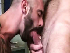 Blithe hunky studs rimming coupled with sucking locate