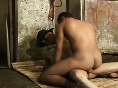 Wise Hot Latino Studs Irritant Screwing