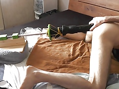 Anal Gender Gadget close to sting Dildo
